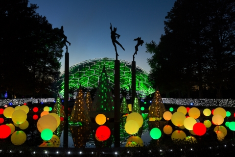 Let It Glow: Brighten the Holidays with Garden Glow