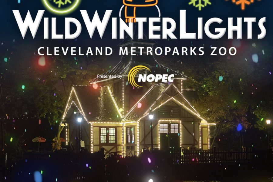 Wild Winter Lights at Metroparks Zoo
